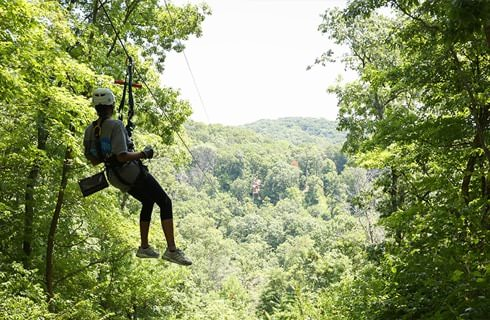 Person on a zipline going through heavily wooded area