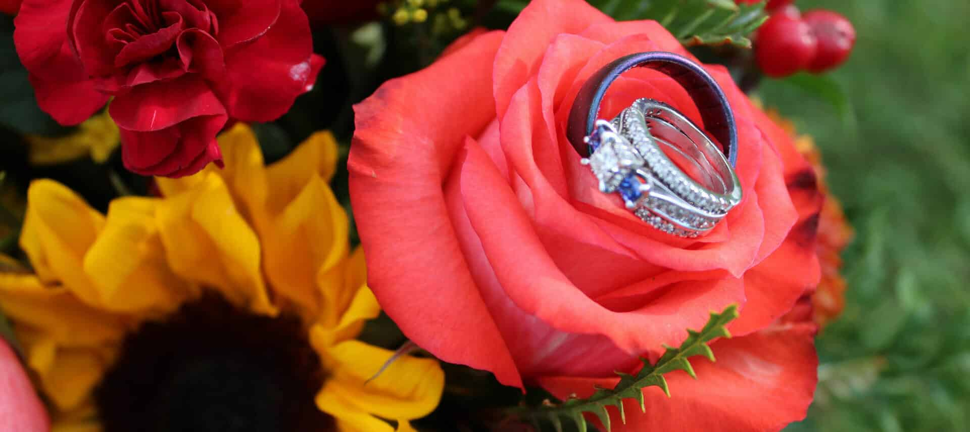 Wedding bands sitting on salmon rose with black-eyed susan and other flowers in the garden